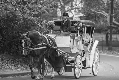 Horse And Buggy Central Park  Poster by John McGraw