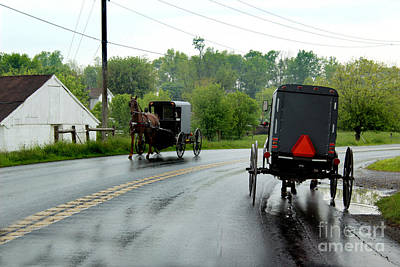 Horse Buggies On A Rainy Day Poster by Karen Adams