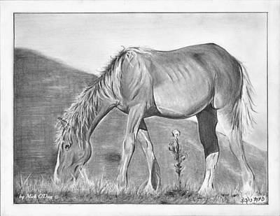 Horse Grazing Poster by Mick ODay
