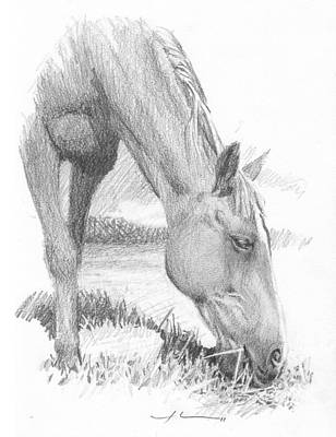 Horse Grazing Pencil_portrait Poster by Mike Theuer