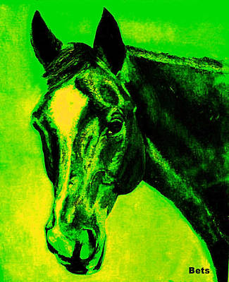 Horse Maduro Green Black And Yellow Poster by Bets Klieger