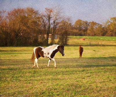 Horseplay Poster by Kim Hojnacki