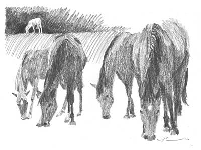 Horses Grazing Pencil Portrait Poster by Mike Theuer