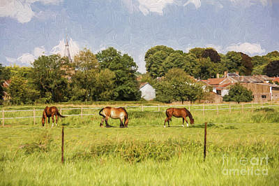 Horses In French Countryside Poster by Avalon Fine Art Photography
