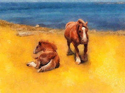 Horses On The Coast Of Brittany Poster by Menega Sabidussi