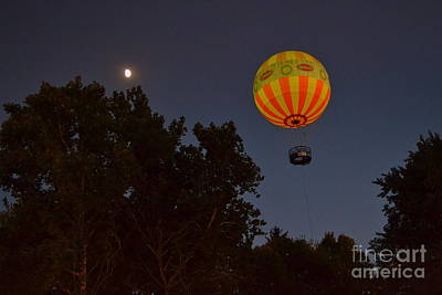 Hot Air Balloon At Night  Poster by Amy Lucid