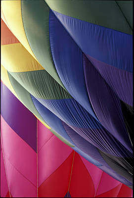 Hot Air Balloons 2 Poster by Gail Maloney