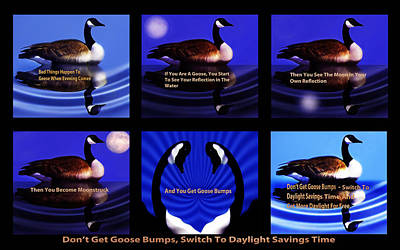 How To Prevent Goose Bumps Poster by Terril Heilman