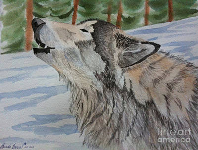 Howling Wolf In Winter Poster by Brenda Brown