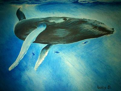 Humpback Whale Poster by Lucy D