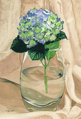 Hydrangea Blossom Poster by Barbara Jewell