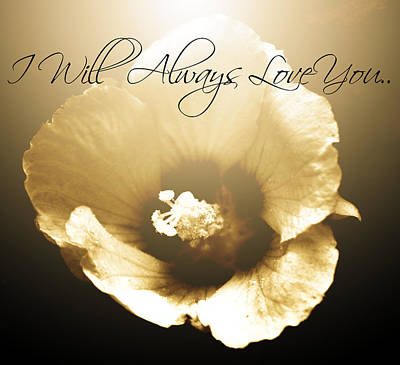 I Will Always Love You Poster by Chastity Hoff