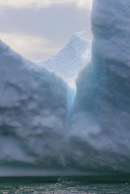 Iceburg1 Poster by Patsy Zedar