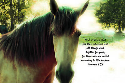 If Horses Could Talk - Verse Poster by Anita Faye