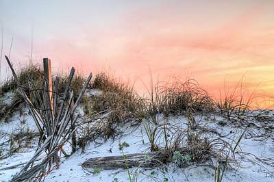 In The Dunes Of Pensacola Beach Poster by JC Findley
