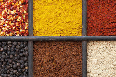 Indian Spice Tray Poster by Tim Gainey