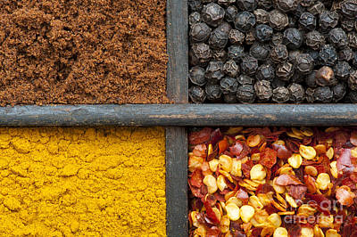 Indian Spices Pattern Poster by Tim Gainey