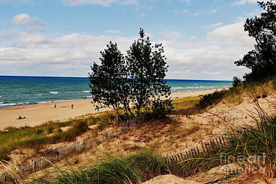 Indiana Dunes Two Tree Beachscape Poster by Amy Lucid