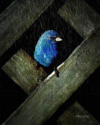Indigo Bunting Bird - Night Rain Poster by Rebecca Korpita