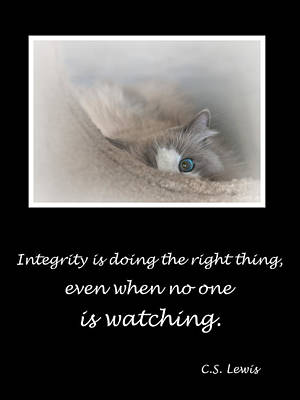 Integrity Poster by David and Carol Kelly