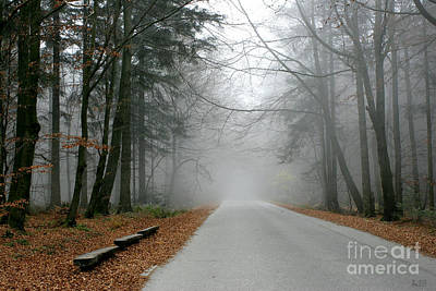 Into The Mist Poster by Joanna Cieslinska