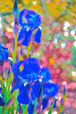 Iris 22 Poster by Pamela Cooper