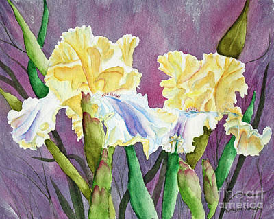 Iris Cream Duo Poster by Kathryn Duncan