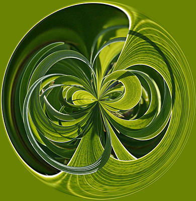 Iris Leaves Orb Poster by Cindi Ressler