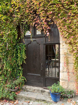 Ivy Covered Doorway Poster by Paul Topp