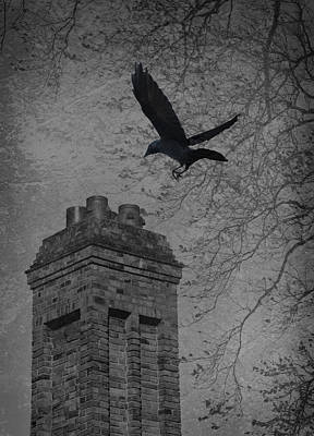 Jackdaw Flying To Chimney Poster by Amanda And Christopher Elwell