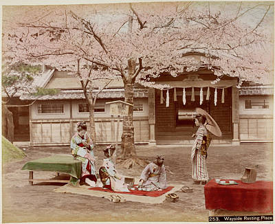 Japanese Building And A Cherry Tree Poster by British Library