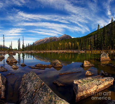 Jasper - Autumn Reflections Poster by Terry Elniski