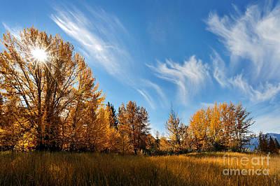 Jasper - Autumn Sky Chief Poster by Terry Elniski