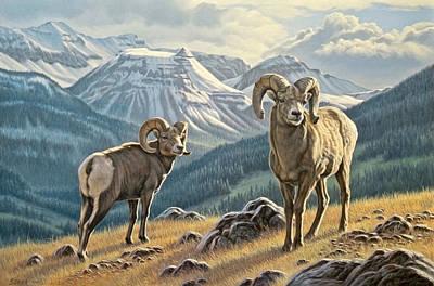 Jasper Rams Poster by Paul Krapf