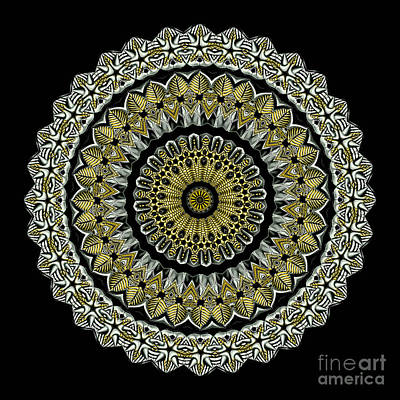 Kaleidoscope Ernst Haeckl Sea Life Series Steampunk Feel Poster by Amy Cicconi