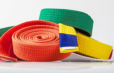 Karate Belts Poster by Shaun Wilkinson
