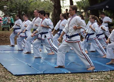 Karate Demo1 Poster by Megan Dirsa-DuBois