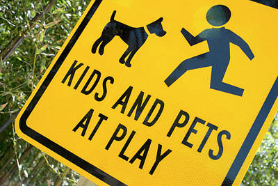Kids And Pets At Play, Warning Sign Poster by Julien Mcroberts