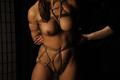 Kinbaku In Action Poster by Azure Dragon