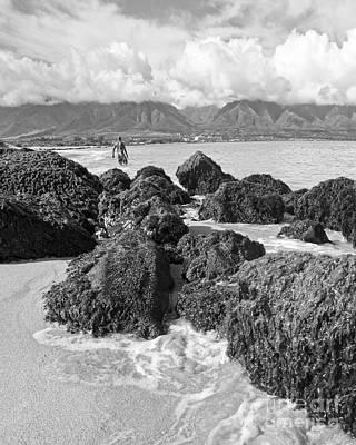Kite Beach Maui Hawaii Poster by Edward Fielding