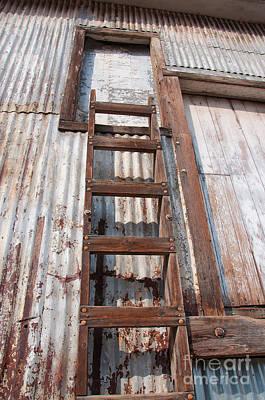 Ladder 1 Poster by Minnie Lippiatt