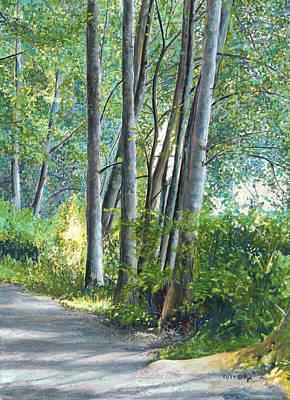 Lake Padden Series - Kathleen Keller Memorial Bench Poster by Nick Payne