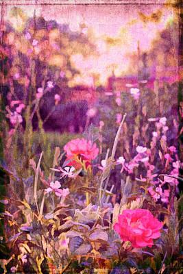 Last Year's Garden Poster by Pamela Cooper