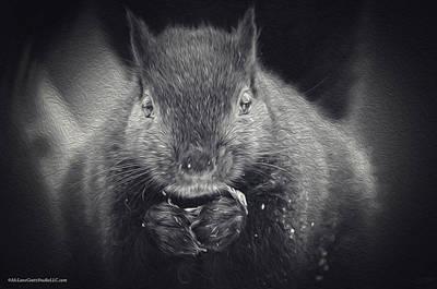Late Night Squirrel Snack Poster by LeeAnn McLaneGoetz McLaneGoetzStudioLLCcom