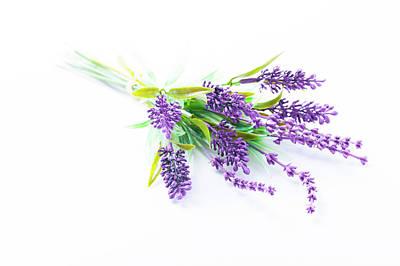 Lavender Flowers Poster by Wladimir Bulgar
