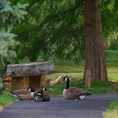 Lazy Ducks Poster by Julie Grace