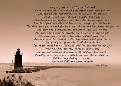 Legacy Of An Adopted Child Poster by Trish Tritz