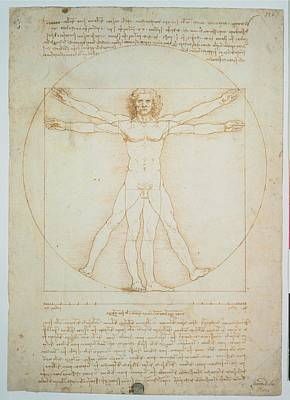 Leonardo Da Vinci, Vitruvian Man - Poster by Everett