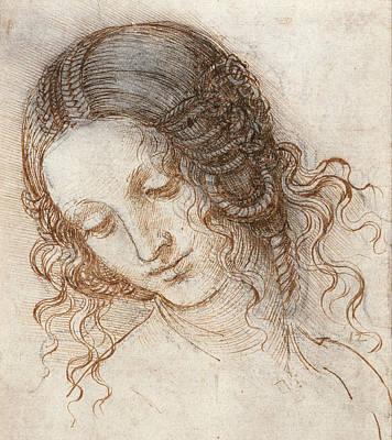 Leonardo Head Of Woman Drawing Poster by