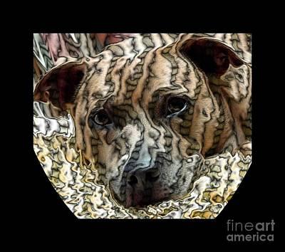 Li Ti Dog Poster by Renee Trenholm